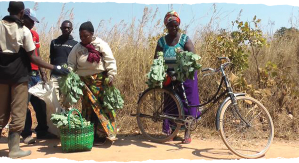 Bikes-for-Africa