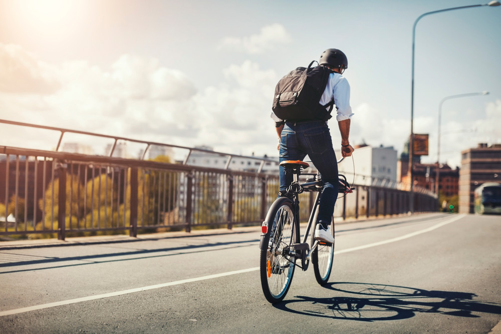 cycling-auckland