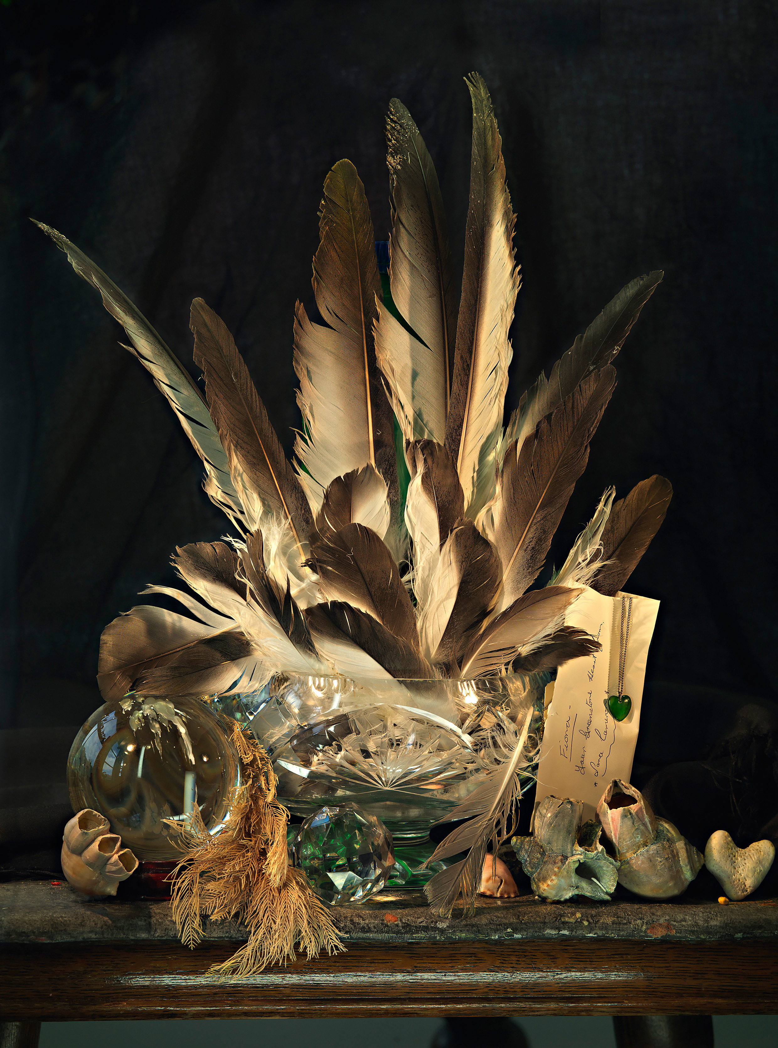 Still Life with Albatross Feathers, Pounamu and Coral Hearts, 2014.
