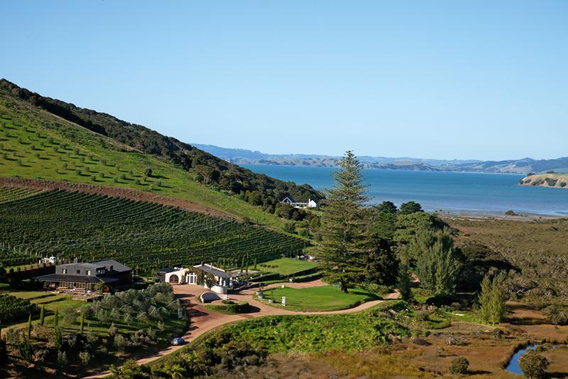 Poderi Crisci winery and restaurant, Waiheke, Auckland