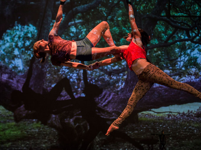 Circus at its offbeat best, the Goblin Market is a fun mashup of old and new