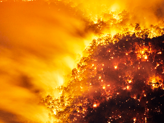 10 things you DON'T need to worry about thanks to the 2050 climate apocalypse