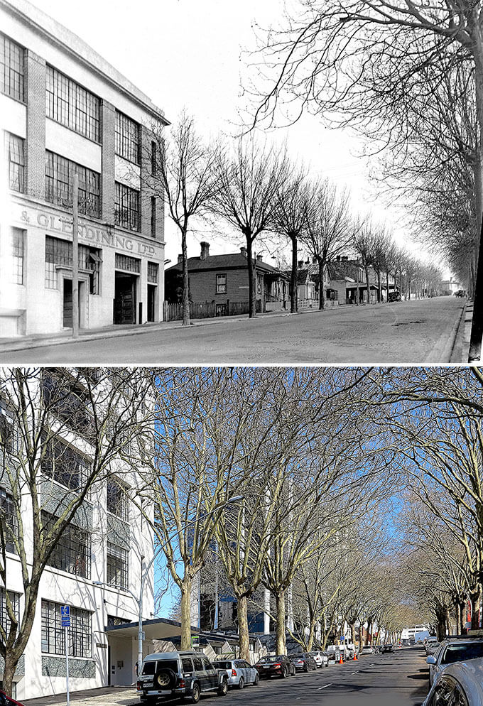 Greys Ave: What central Auckland's oldest thoroughfare tells us about our city