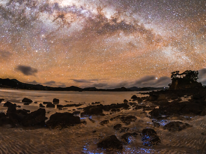 Get yourself to Great Barrier Island for a night under the stars